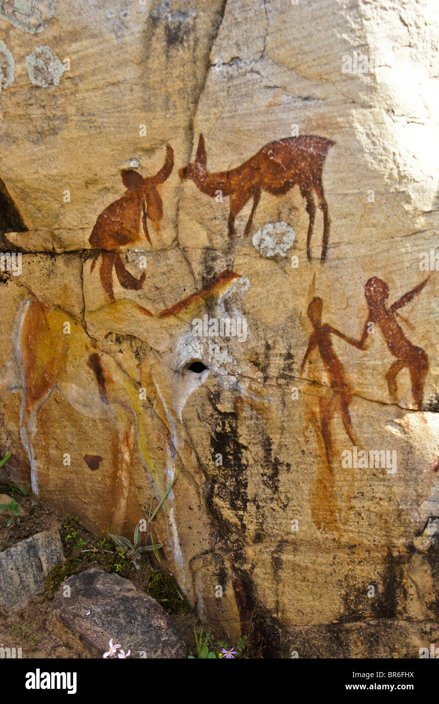Bushman paintings, Clanwilliam, Western Cape, South Africa - Stock Image