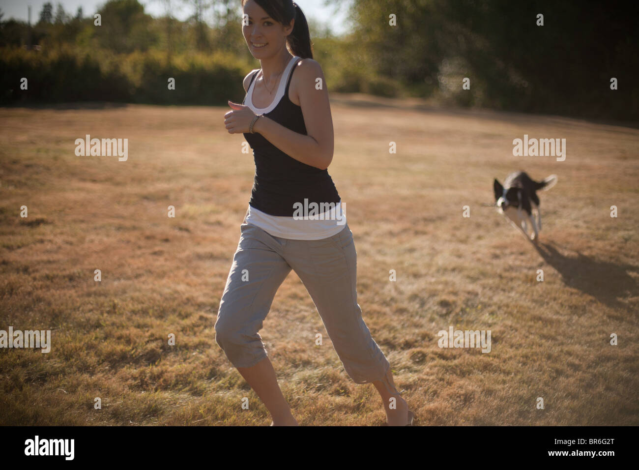A lifestyle image of a young female dog trainer playing with her border collie dog at a park in Vancouver, BC. Canada. - Stock Image