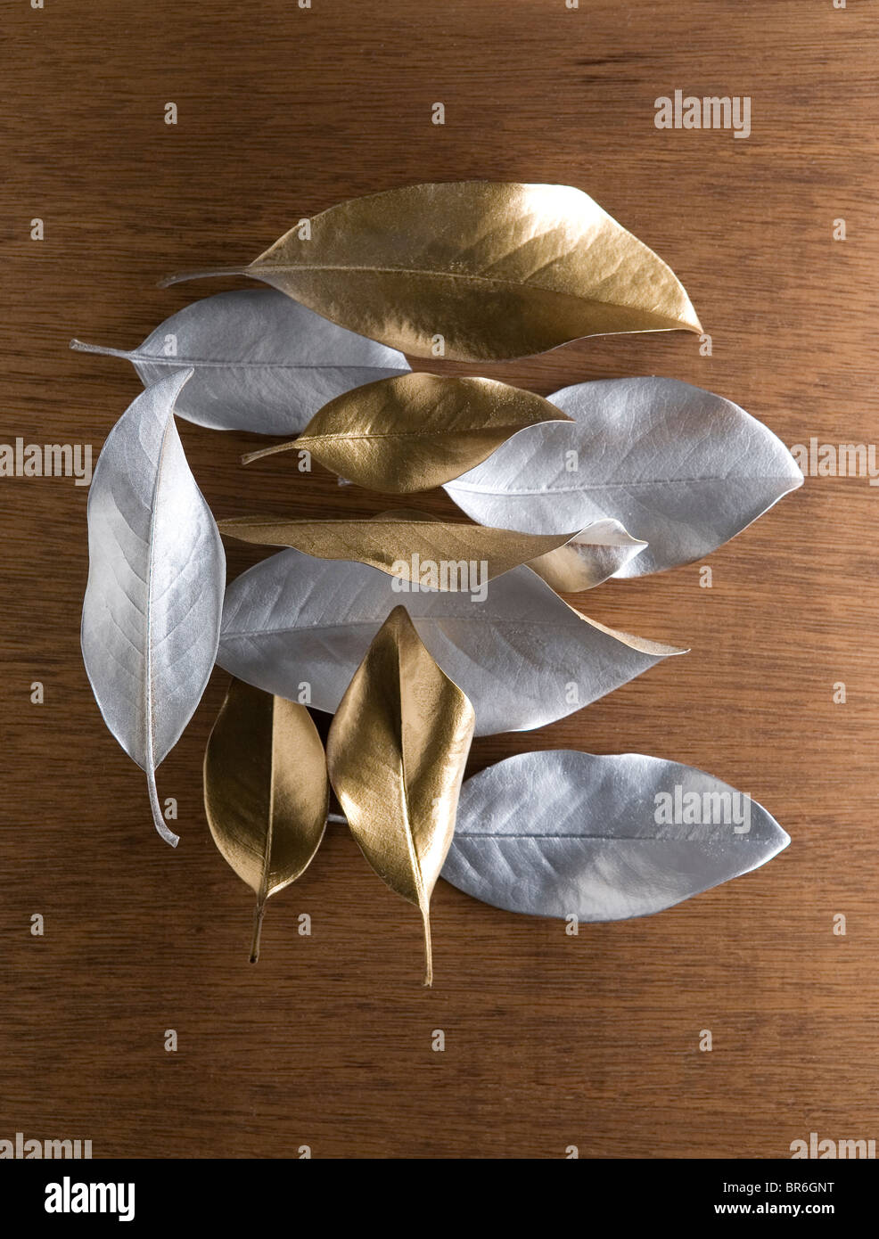 variety of silver and gold leaves - Stock Image