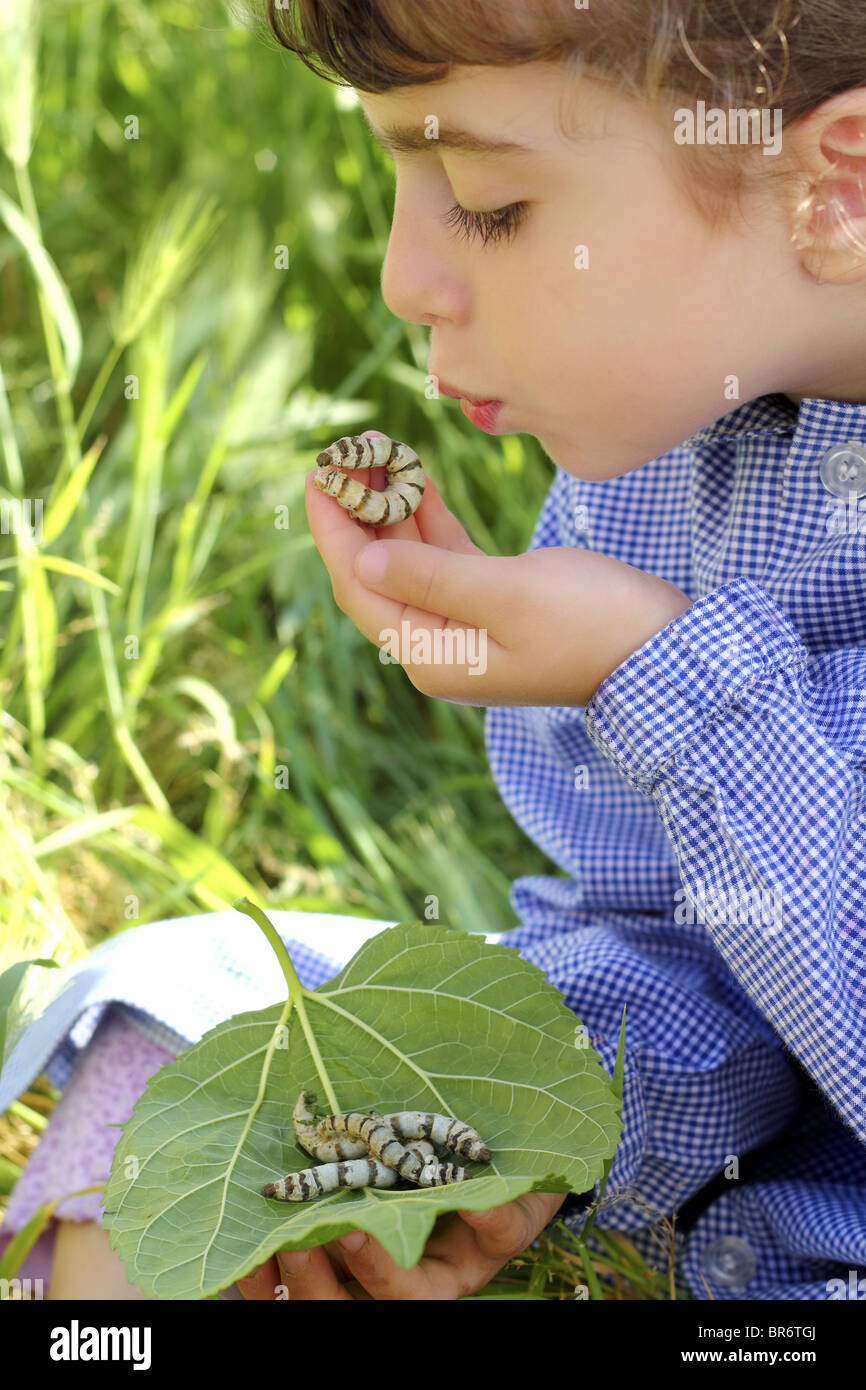 little girl playing with silkworm in hands with school uniform - Stock Image