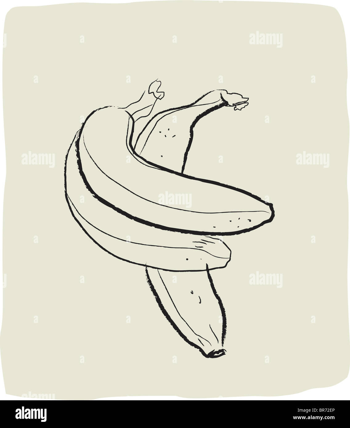 A textured line drawing of bananas - Stock Image