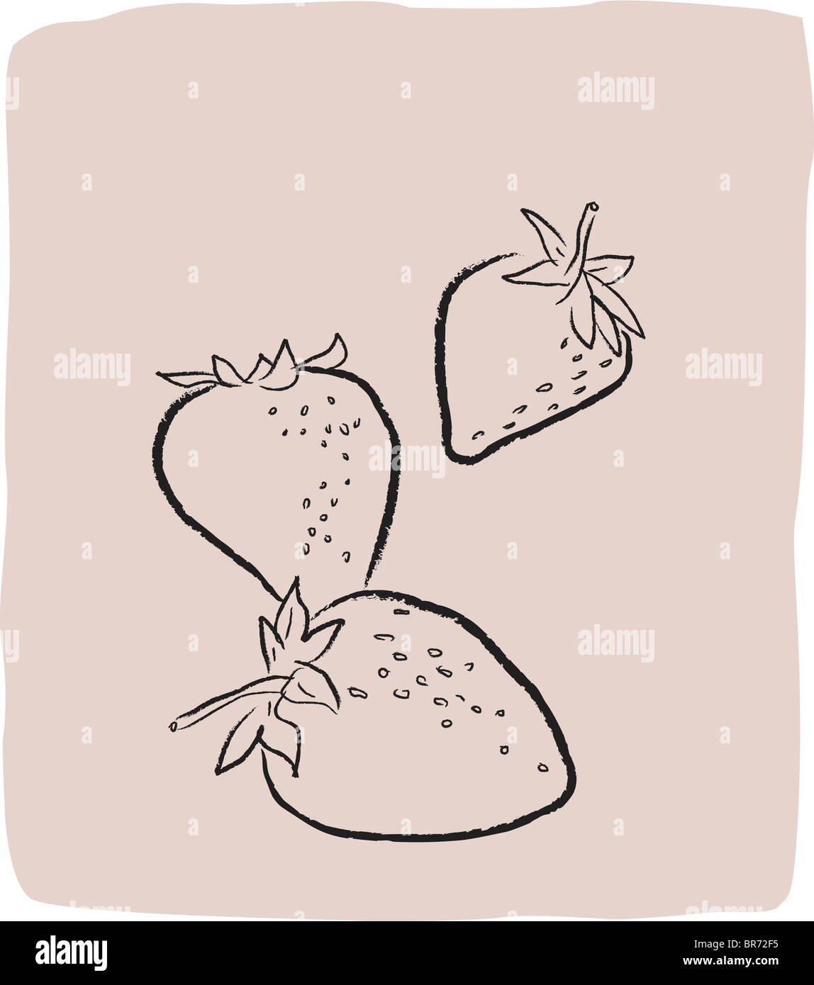 A textured line drawing of strawberries - Stock Image
