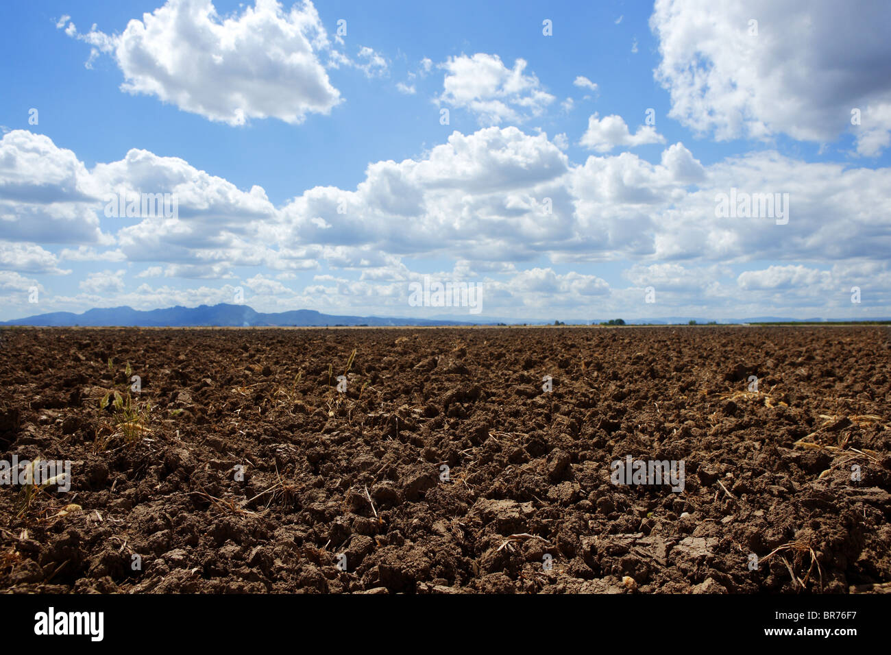 plough plowed brown clay soil field blue sky horizon - Stock Image