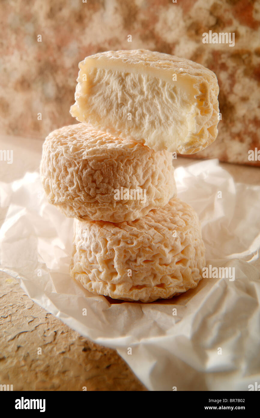 Traditional French goats cheese - chevre. - Stock Image