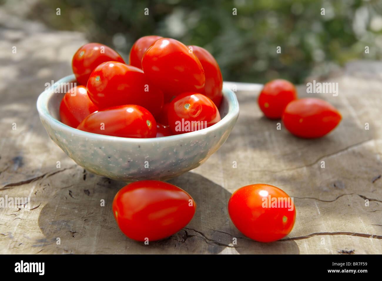 Fresh picked plum tomatoes - Stock Image