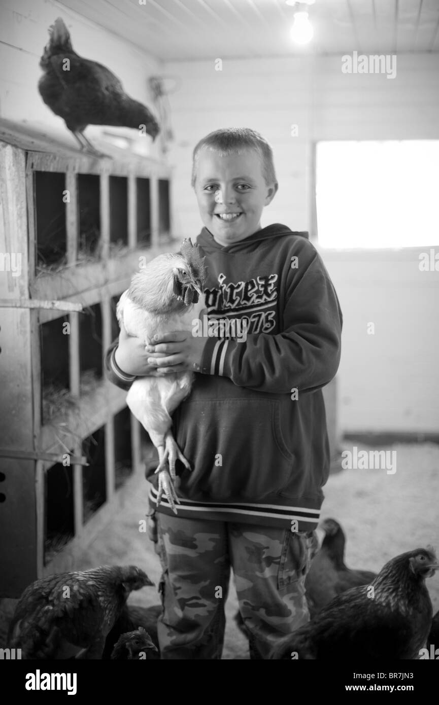 Boy with rooster in Maine - Stock Image