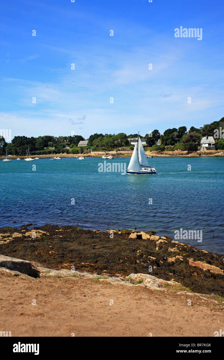 View of saling boats from Pointe de Toulindac towards Port Blanc, Ile aux Moines, Golfe du Morbihan, Brittany, Bretagne, - Stock Image