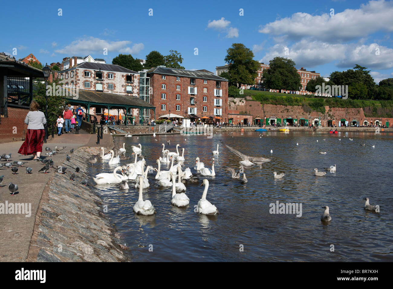 The Quayside and River Exe in Exeter - Stock Image