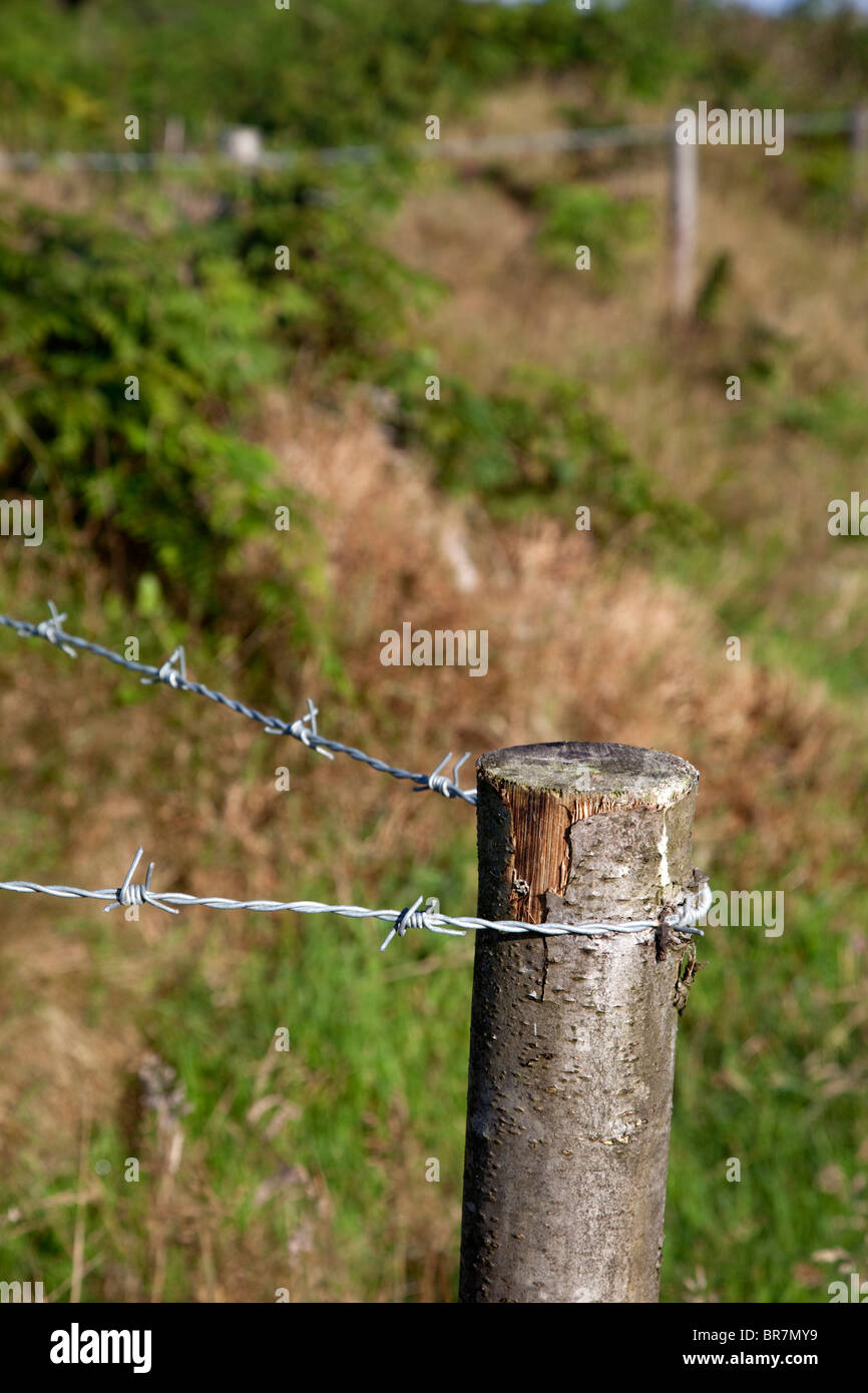 Chestnut Fence Post; Trevean Farm; Cornwall - Stock Image
