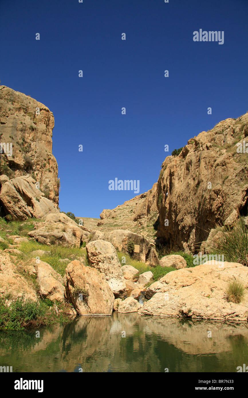 Judean desert, Ein Prat (Ein Fara) in Wadi Qelt - Stock Image