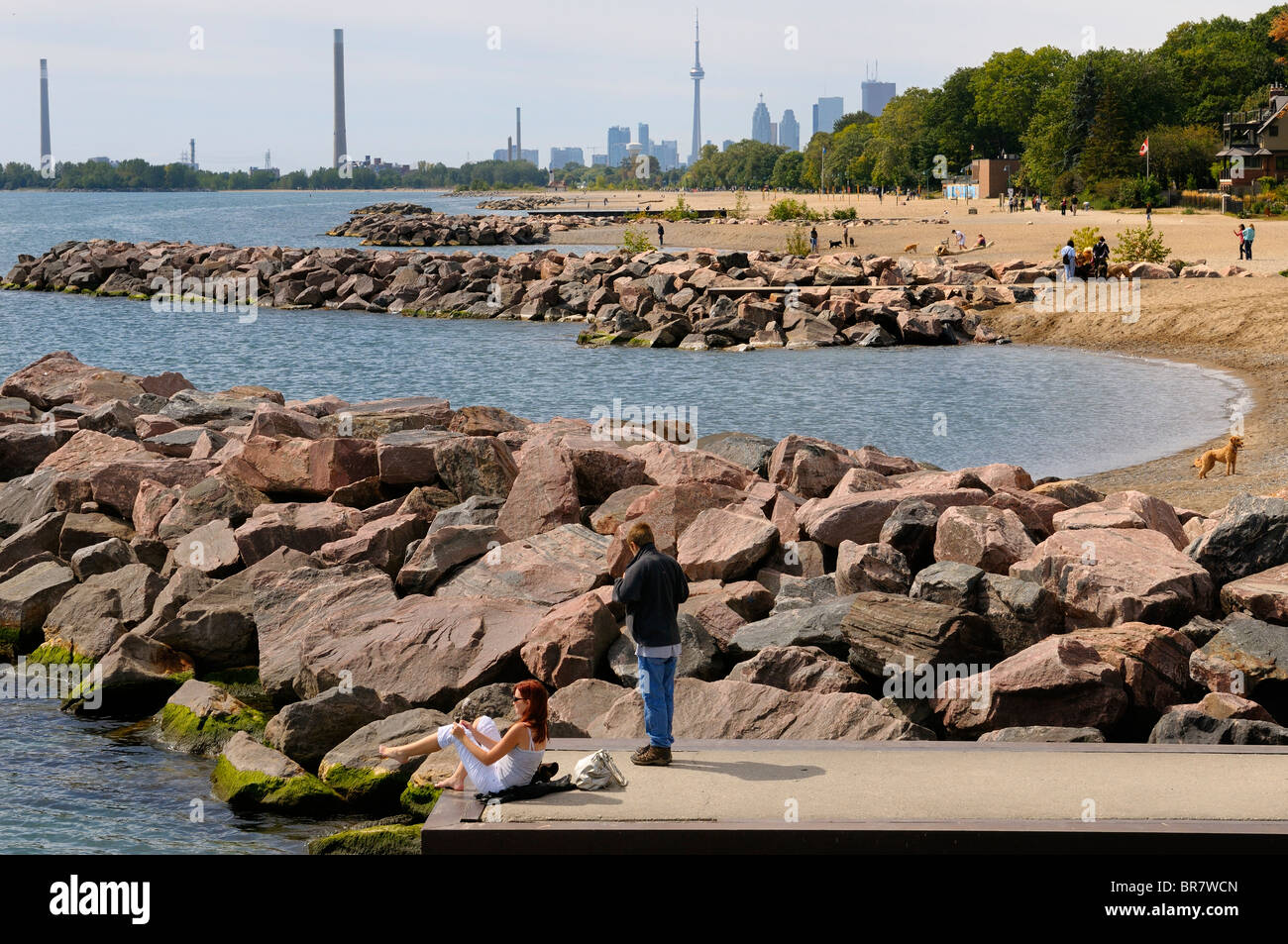 Coastline view of Toronto Beaches Park on Lake Ontario with dogs and sunbathers and city skyline - Stock Image