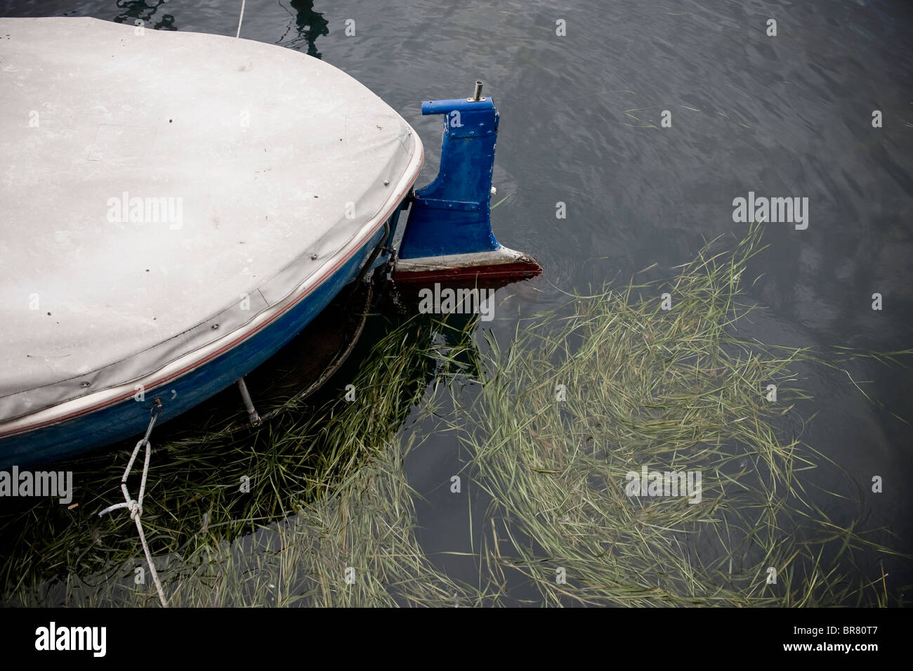 Boat and weed in harbour pier area in Lake Iseo, Iseo, northern Italy. - Stock Image