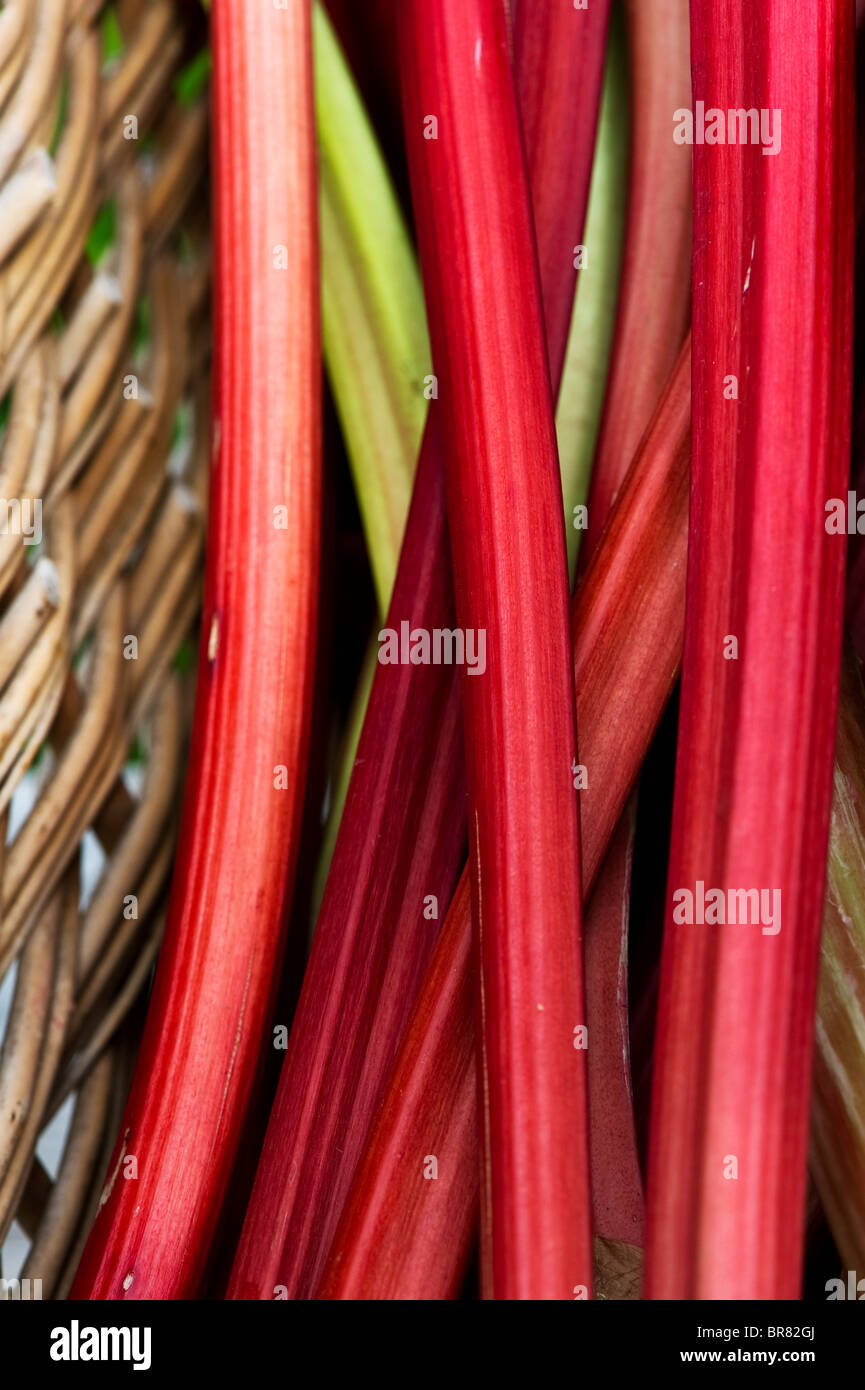 Rhubarb in a wicker basket - Stock Image