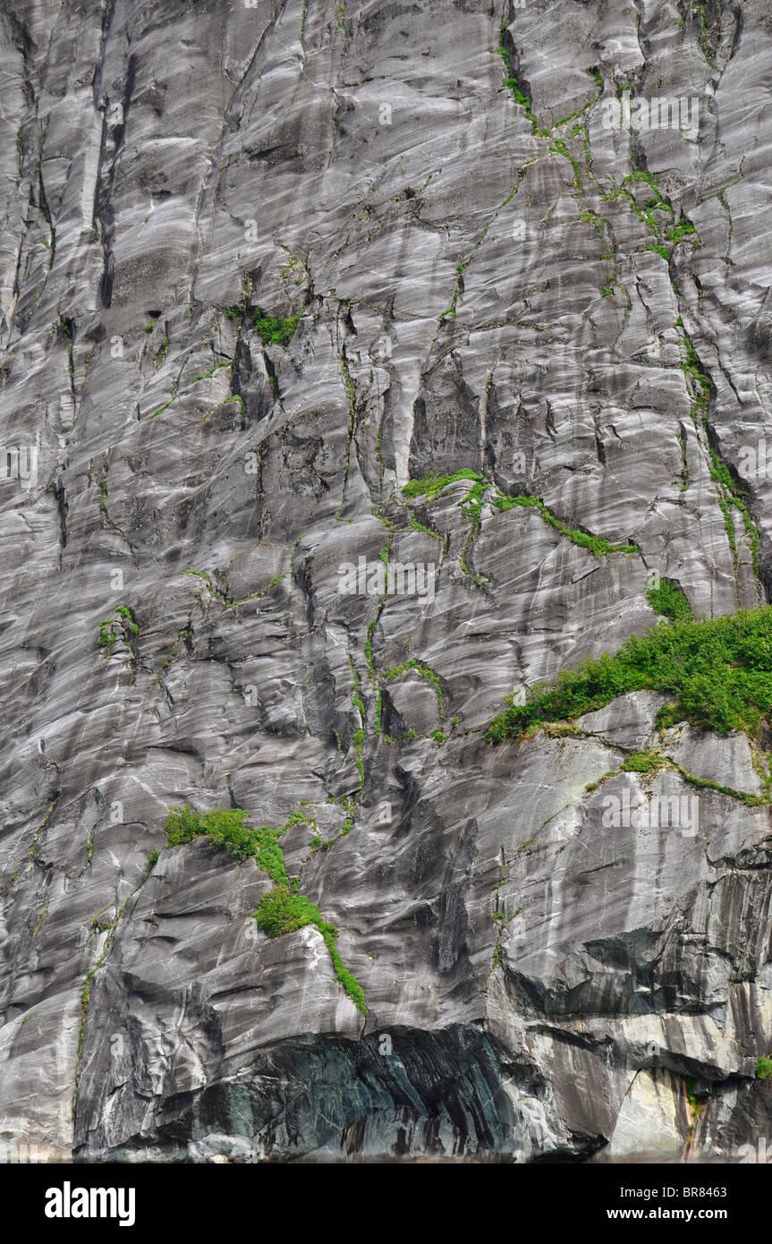 Rockface etched by glaciers (Tracy Arm, Alaska) - Stock Image