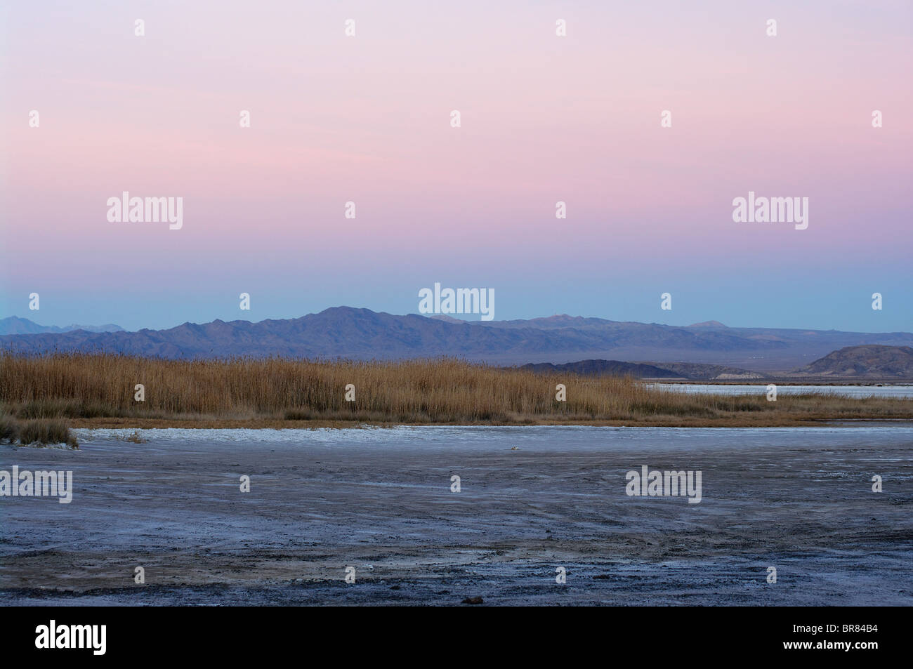 Soda Dry Lake (looking north from Zzyzx Rd), Mojave National Preserve, California Stock Photo