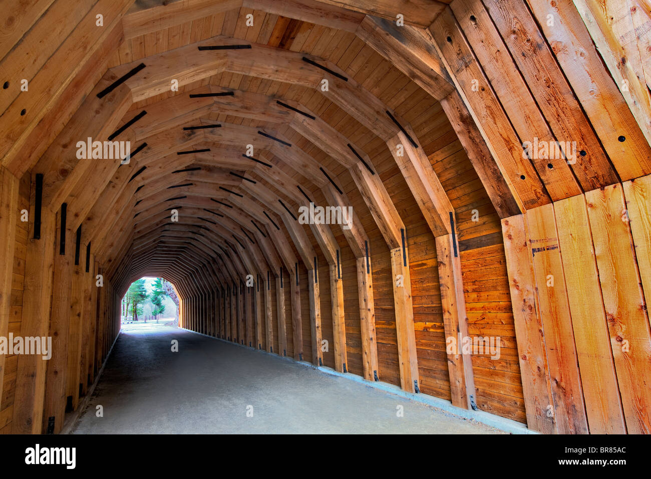 Oneonta Tunnel. Historic Columbia River Highway. Restored 2009 Stock Photo
