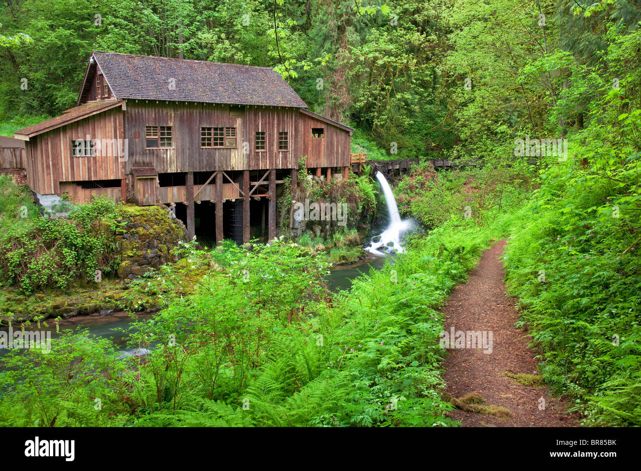 Cedar Creek Grist Mill in spring with path. Woodland, Washington - Stock Image