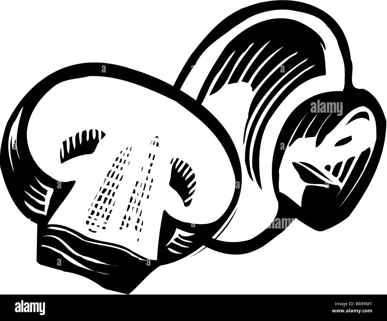 A drawing of button mushrooms in black and white Stock Photo