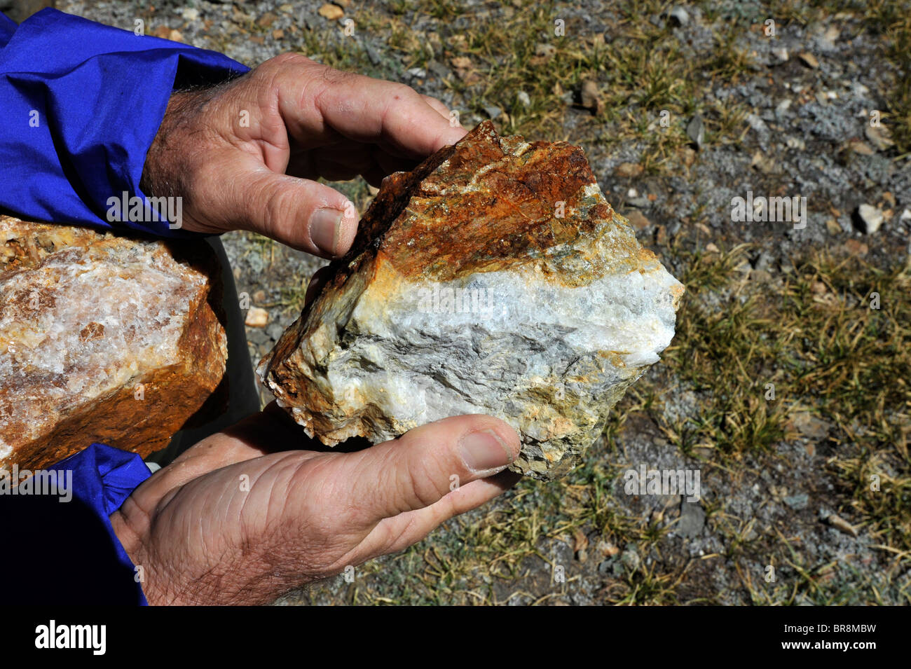 Quartz with Iron Pyrite or Fools gold in the Sierra Nevada - Stock Image