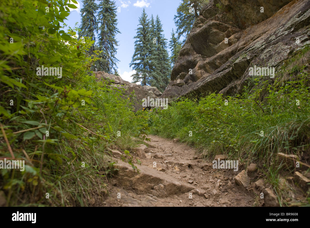 hiking trail, steep hill, Pagosa Springs, Colorado, United States - Stock Image