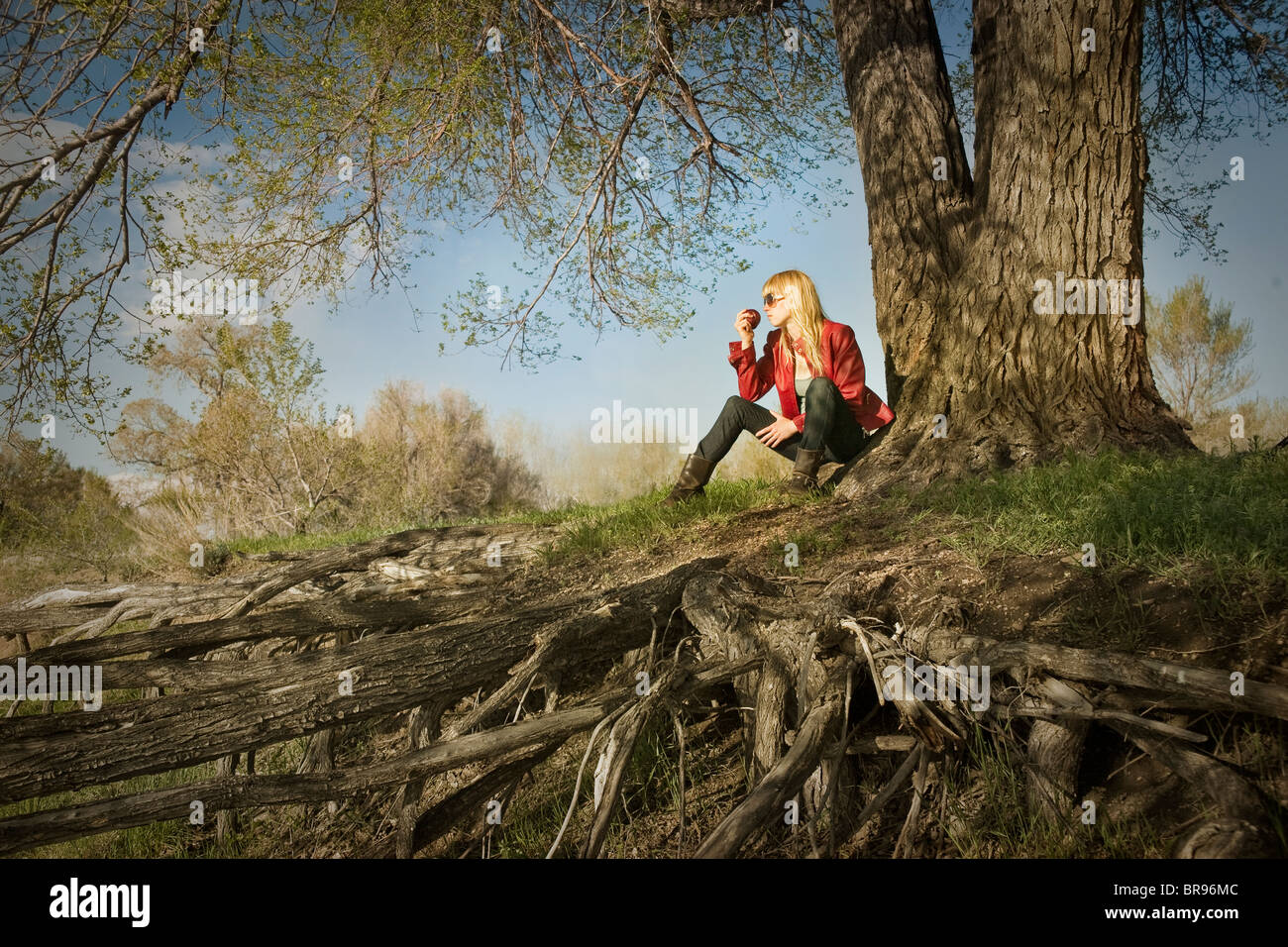 girl eats apple under tree - Stock Image