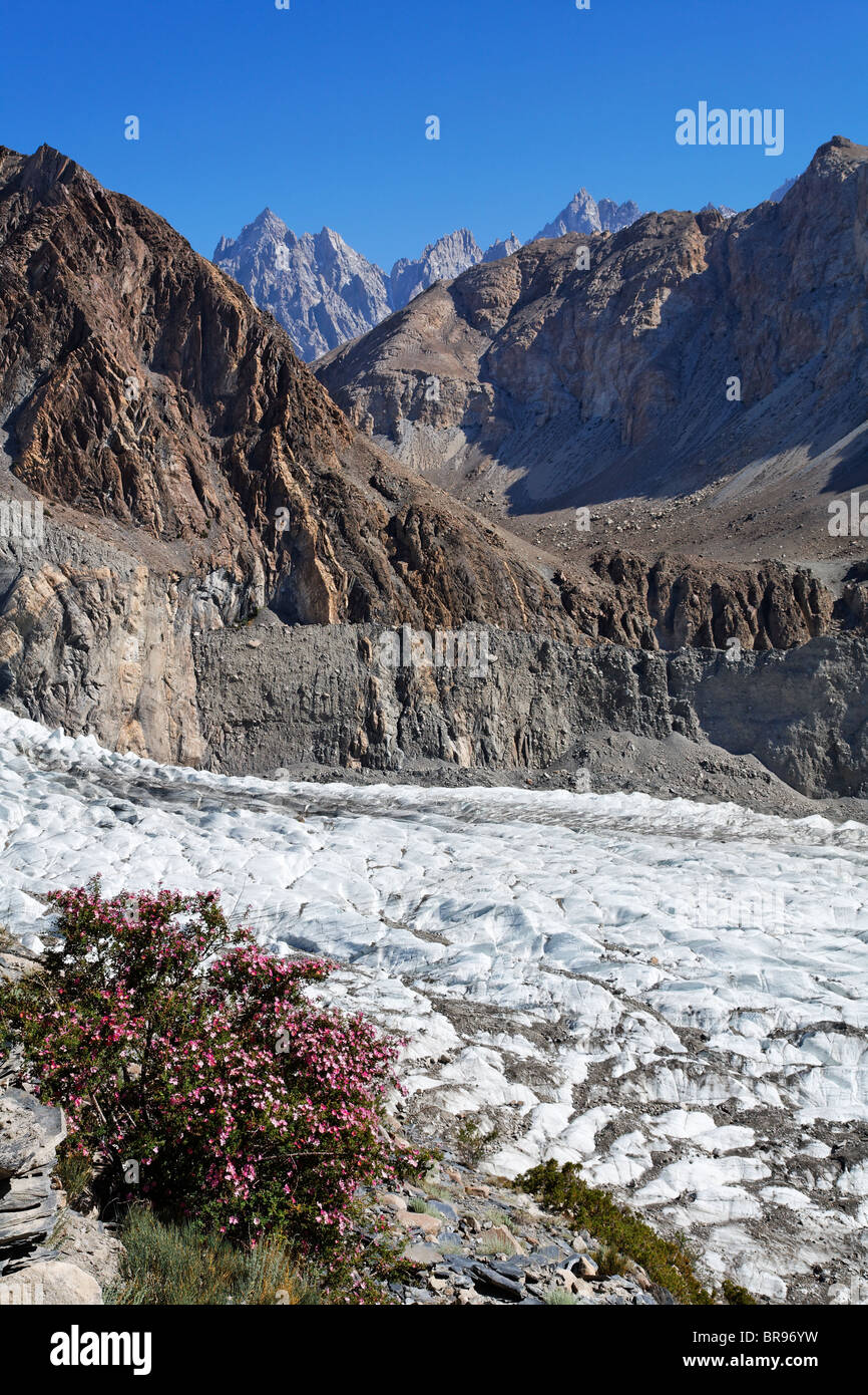 Passu glacier, Hunza Valley, Karakorum, Pakistan - Stock Image