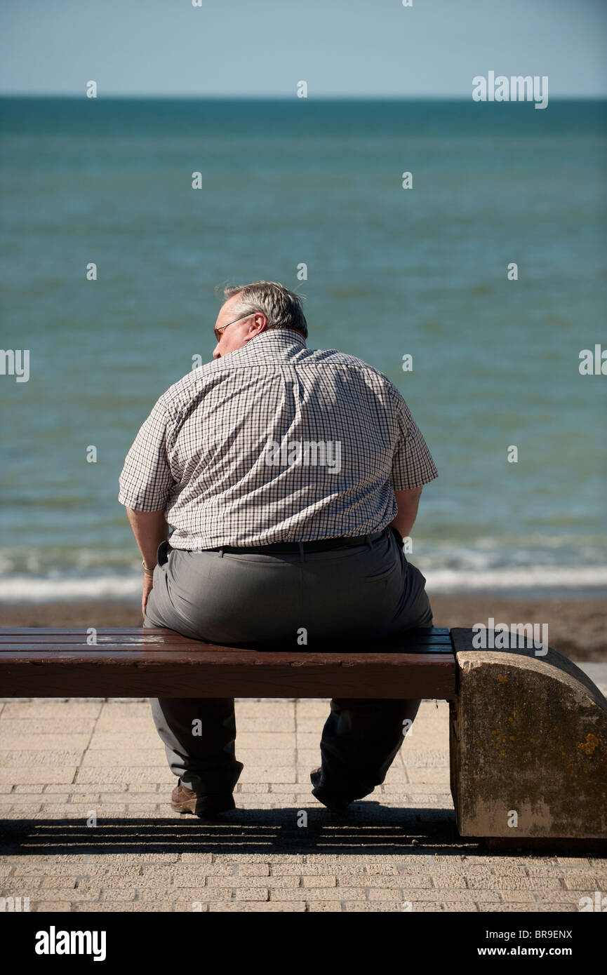 Rear view of an overweight man sitting on a seaside bench, UK - Stock Image