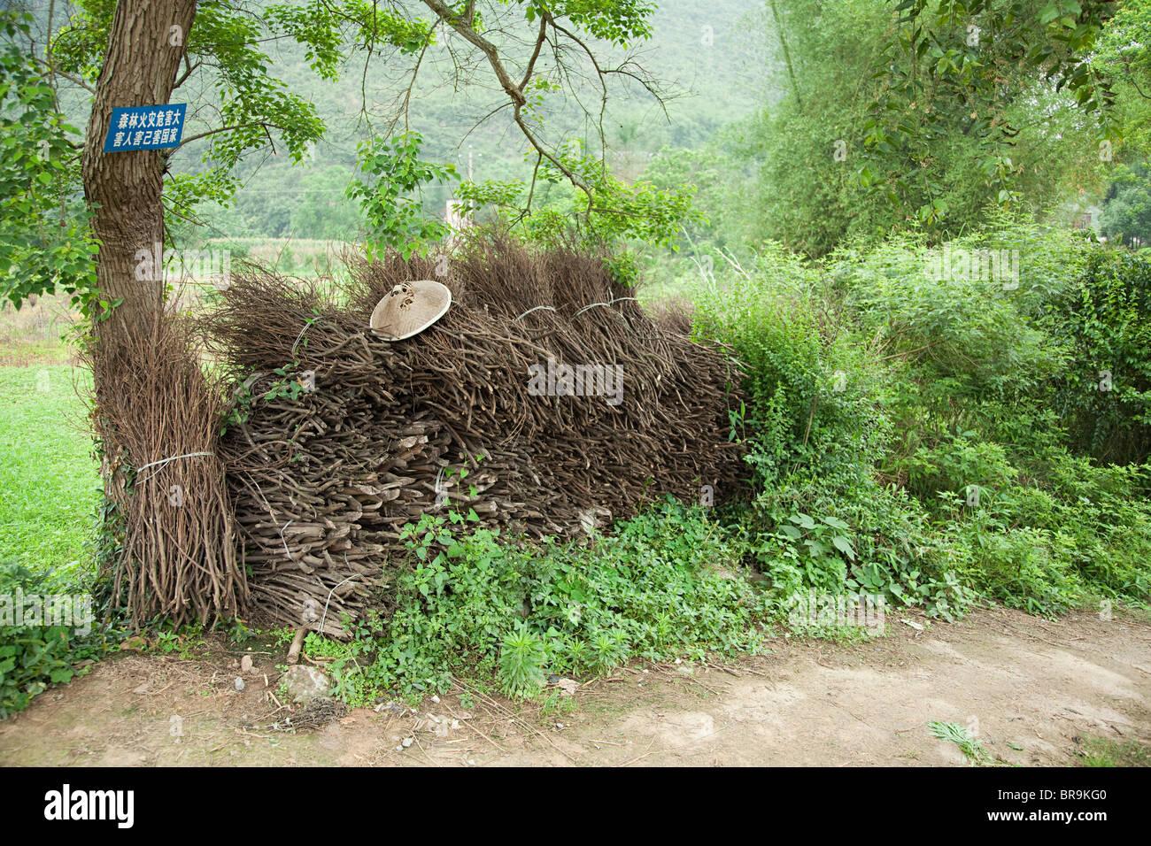 China, guangxi province, yangshuo, bundles of sticks - Stock Image
