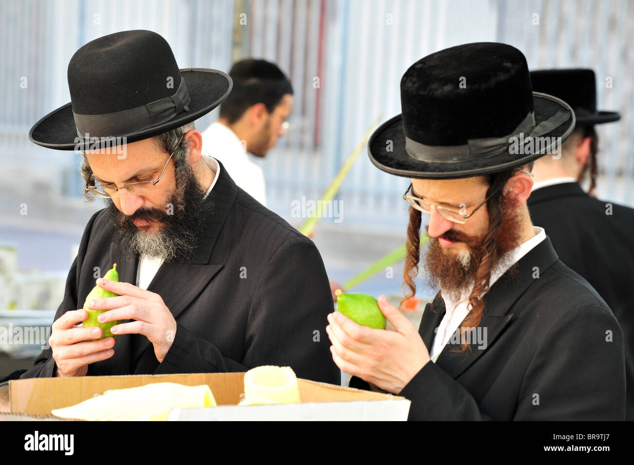 orthodox jewish people selecting the four species for sukkot jewish BR9TJ7 Very best sugary foods father Web pages For glucose interactions and a sweet tasting opportunity (2021)