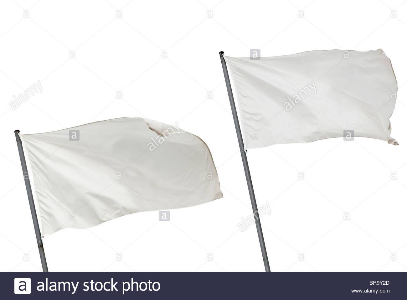 Two white flags waving on the wind. Isolated over white. - Stock Image