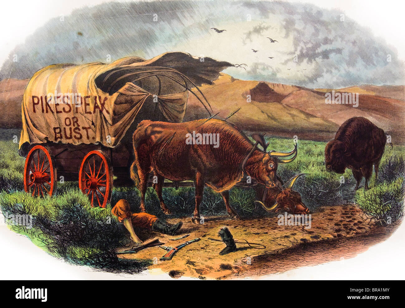 1800s 1859 DEAD PIONEER UNDER COVERED WAGON PIKES PEAK OR BUST SLOGAN OXEN BISON VULTURES COLORADO GOLD RUSH - Stock Image