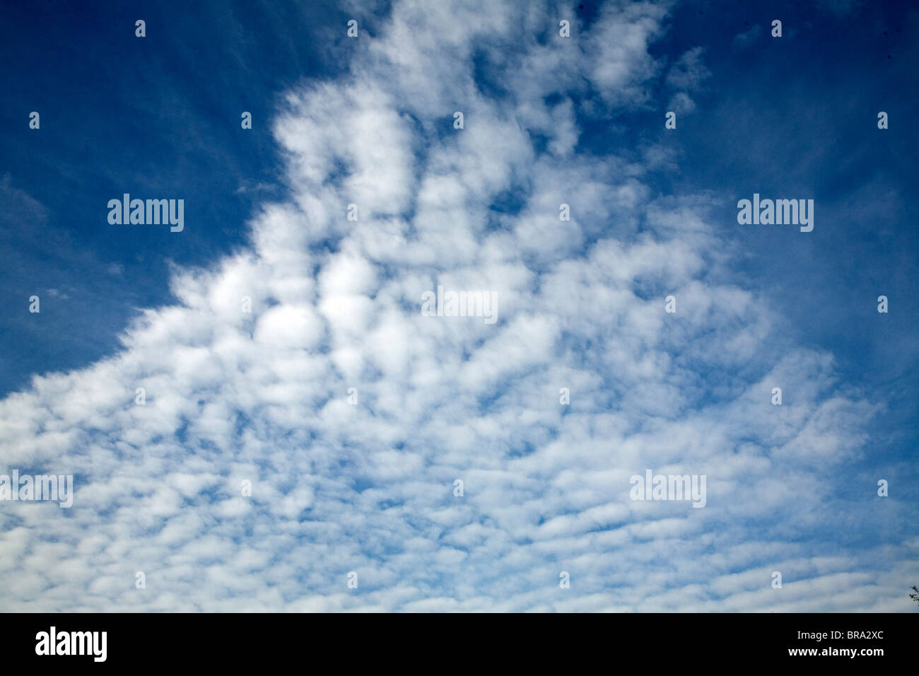 Cirro Cumulus clouds often called mackerel sky - Stock Image