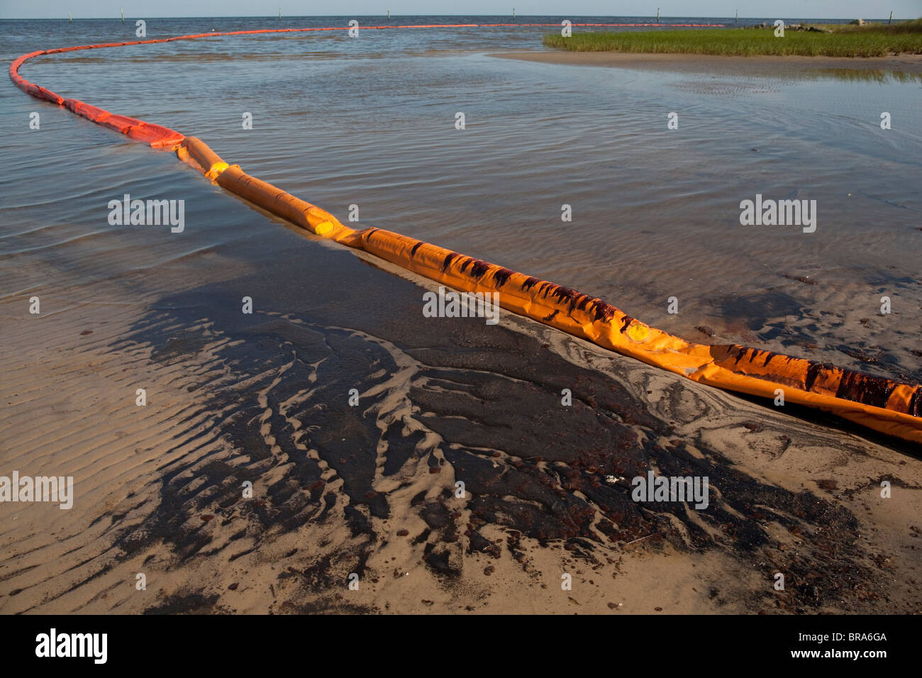 Oil from the BP Deepwater-Horizon oil spill in the Gulf of Mexico covers the shore in Waveland, Mississippi. - Stock Image