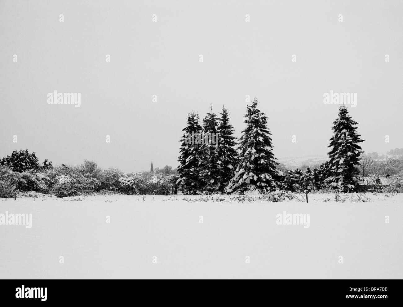 Black and white image of trees and distant buildings in the snow. - Stock Image