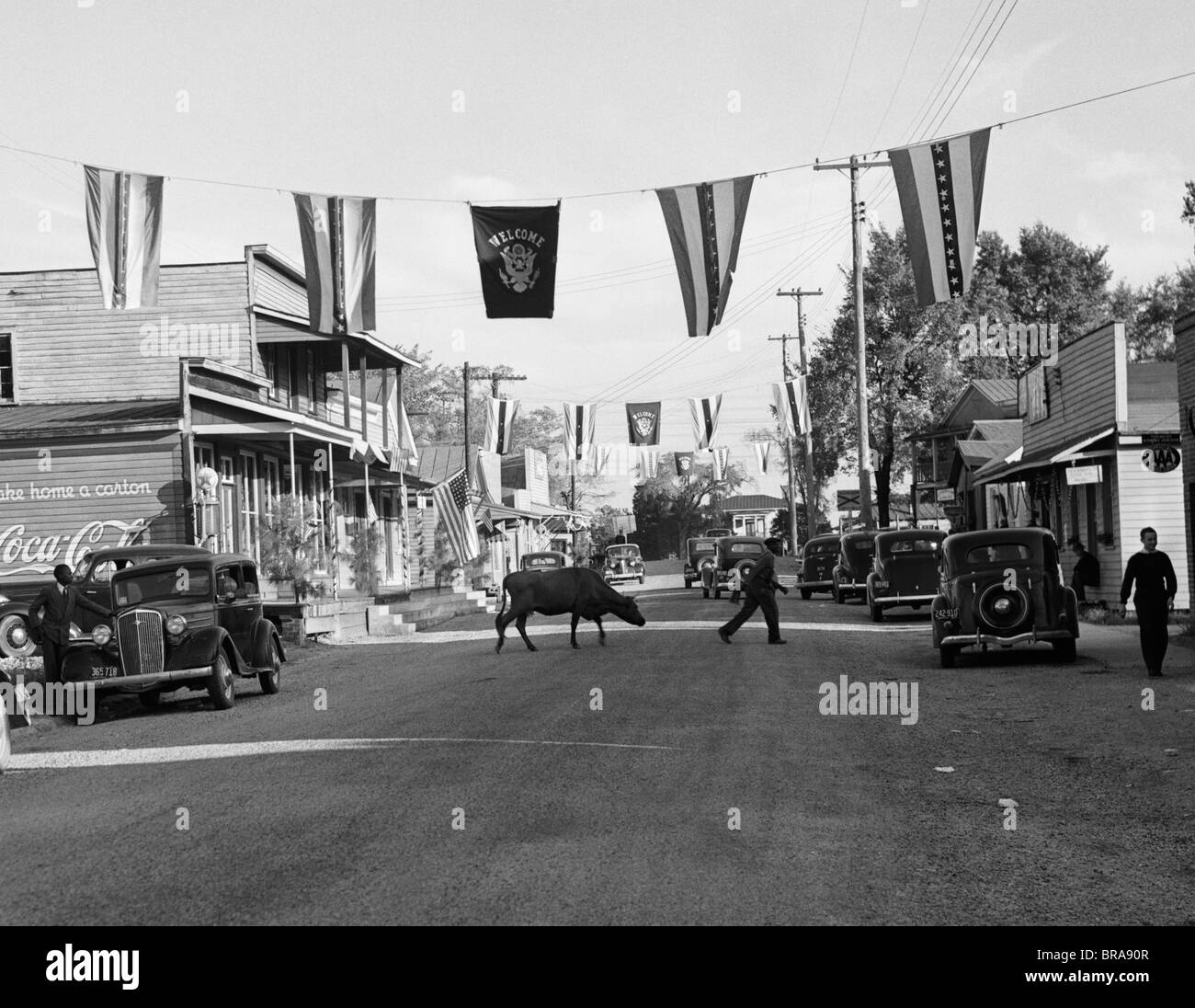 1930s MAIN STREET SMALL TOWN WITH FLAGS FLYING & COW CROSSING STREET - Stock Image