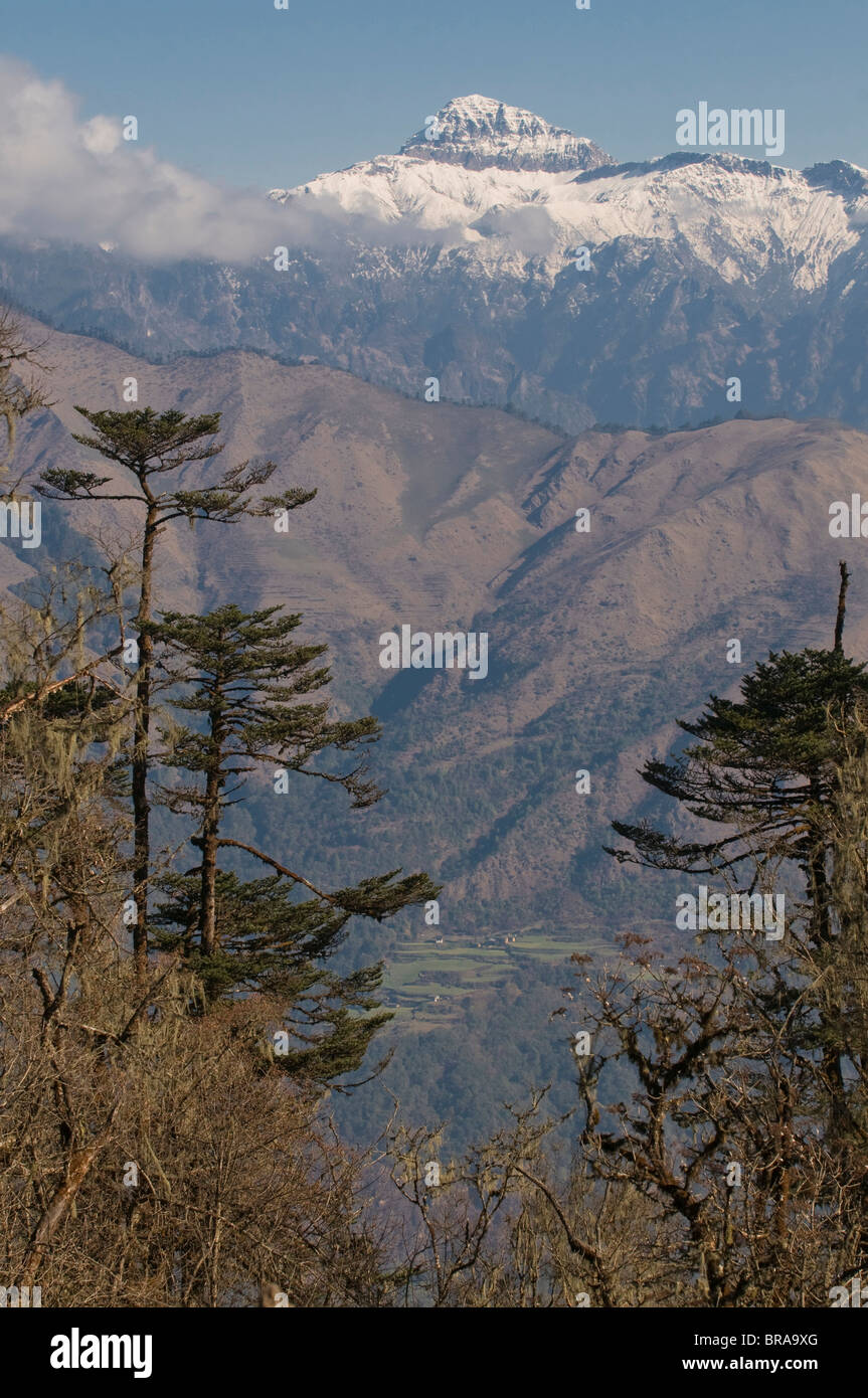 Mountain landscape, Pele La (Pass), Bhutan, Himalayas, Asia Stock Photo