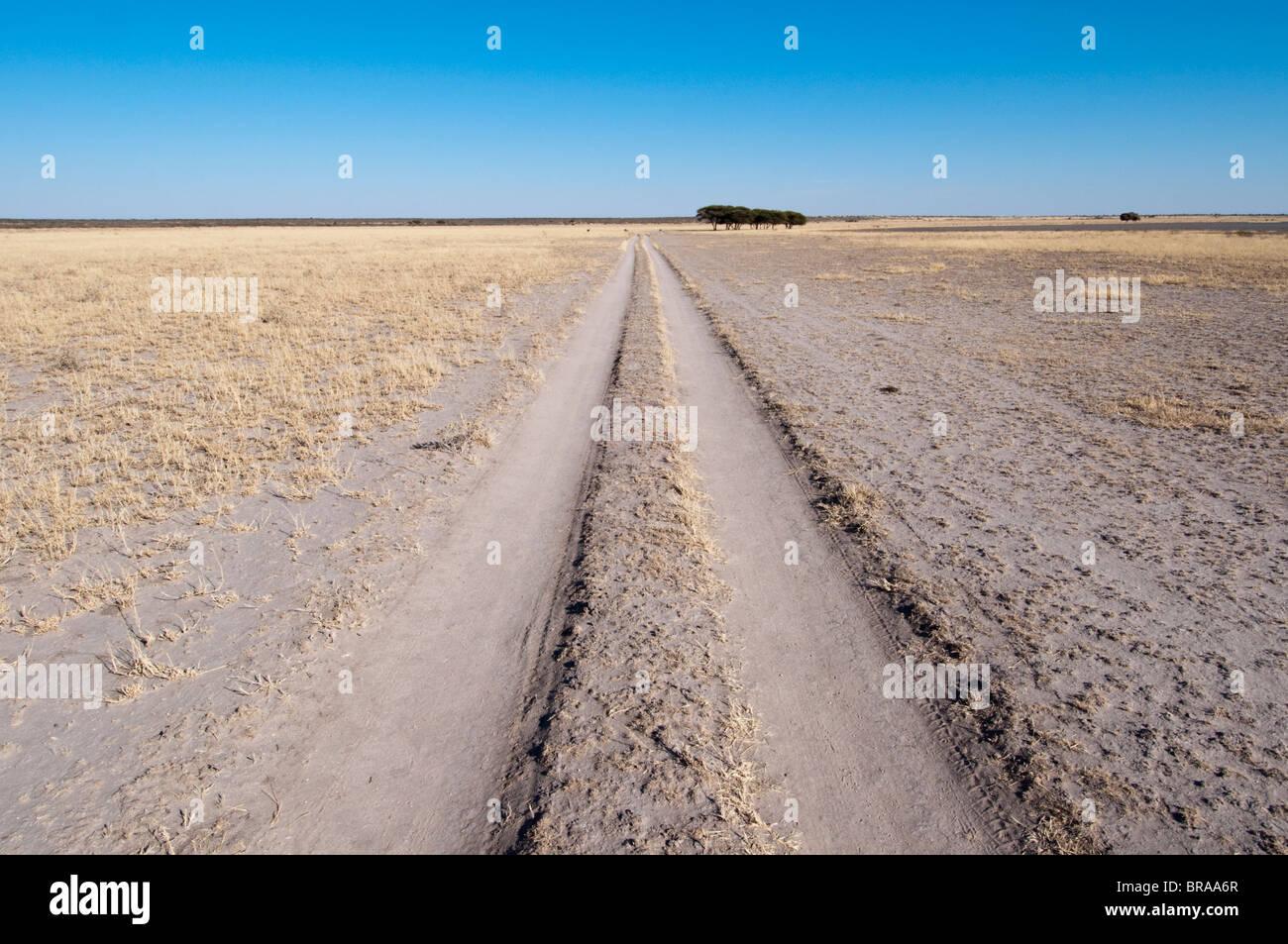 Deception Valley, Central Kalahari Game Reserve, Botswana, Africa - Stock Image