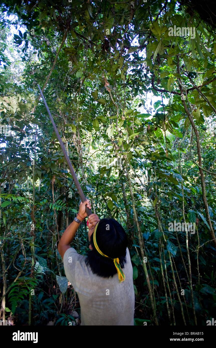 An Achuar man demonstrates using a blowgun, Amazon, Ecuador, South America - Stock Image