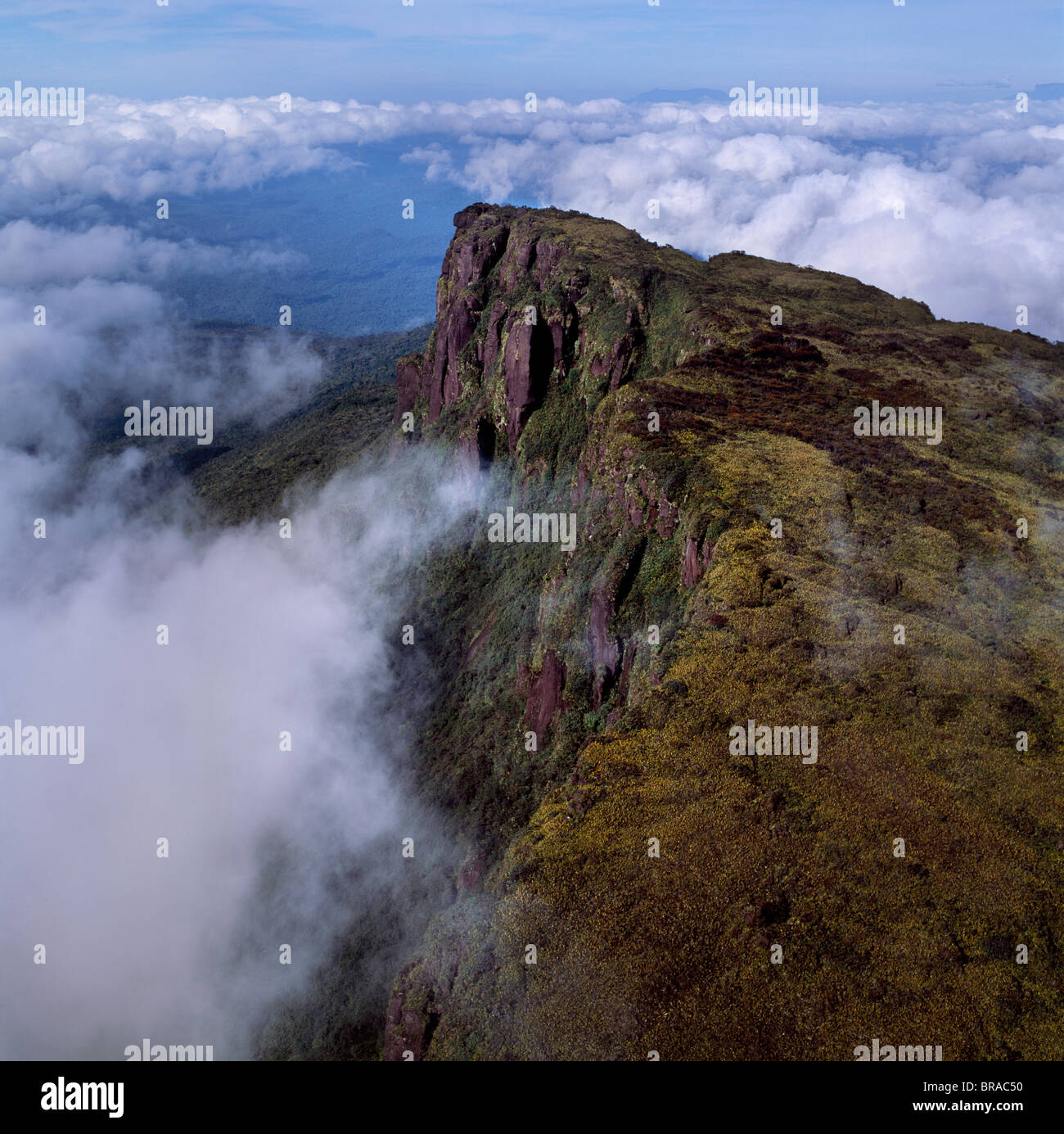 Aerial image of Ayanganna Mountain, Guyana, South America - Stock Image