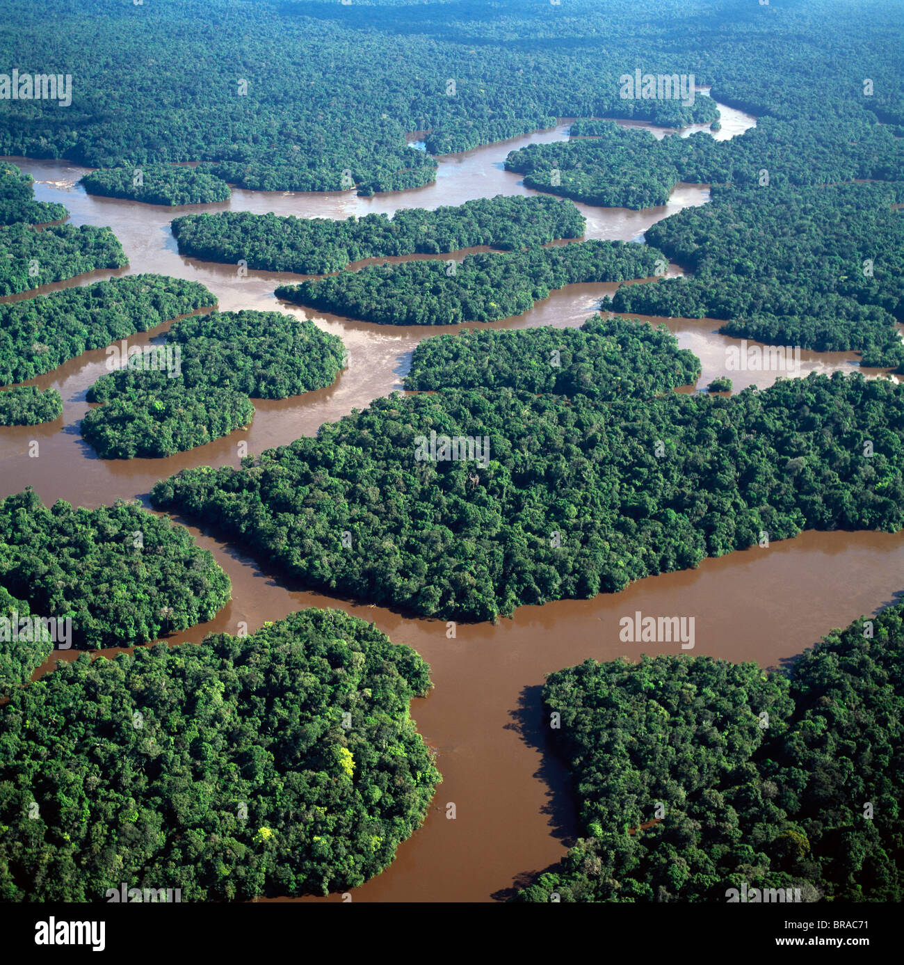 Aerial image of the Lower Mazaruni River with islands of tropical rain forest, Hororabo, near Bartica, Guyana, South - Stock Image