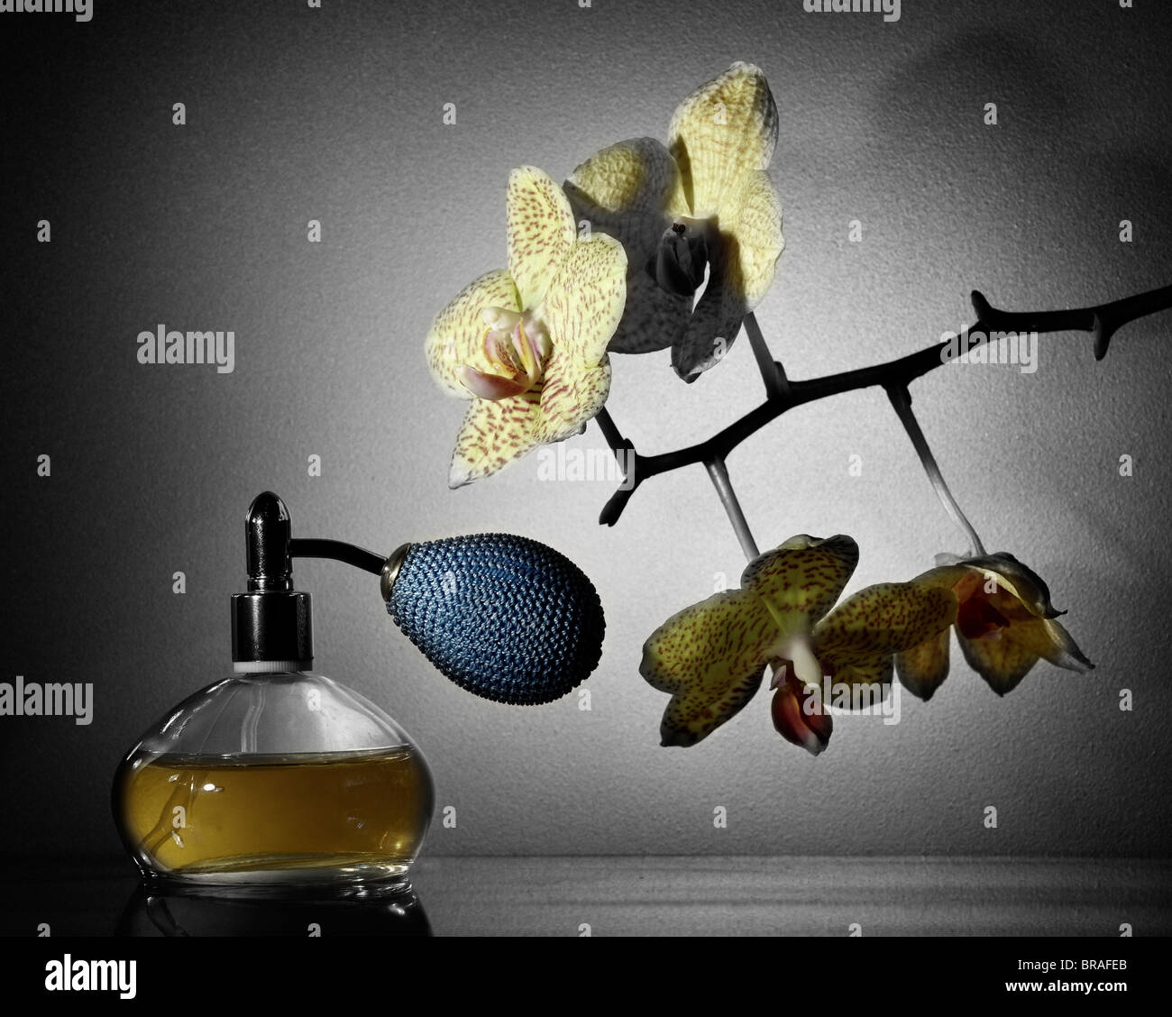 Perfume and Orchid (Colorized) - Stock Image