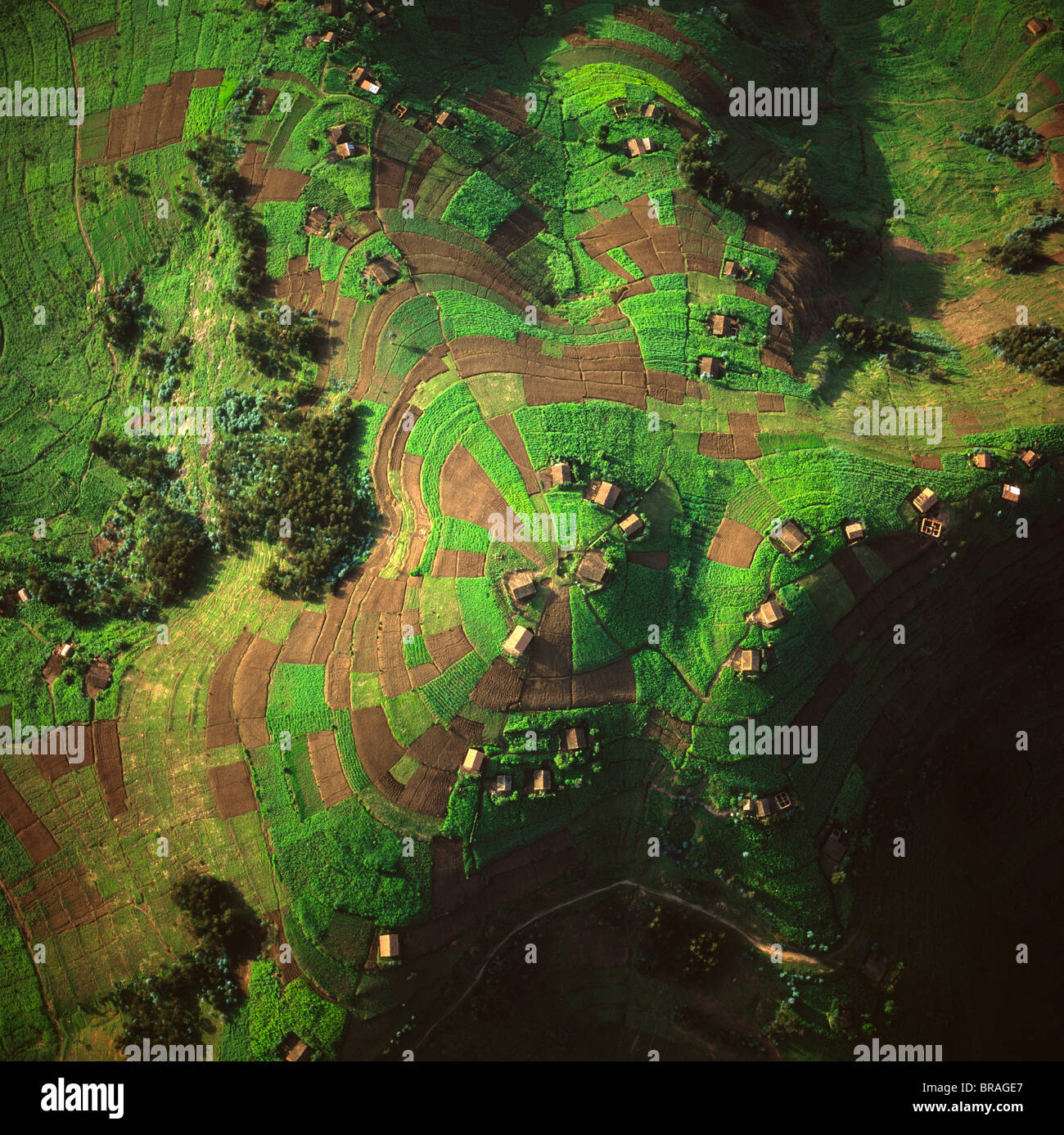 Aerial view of intensive agriculture in Rwanda, Africa - Stock Image