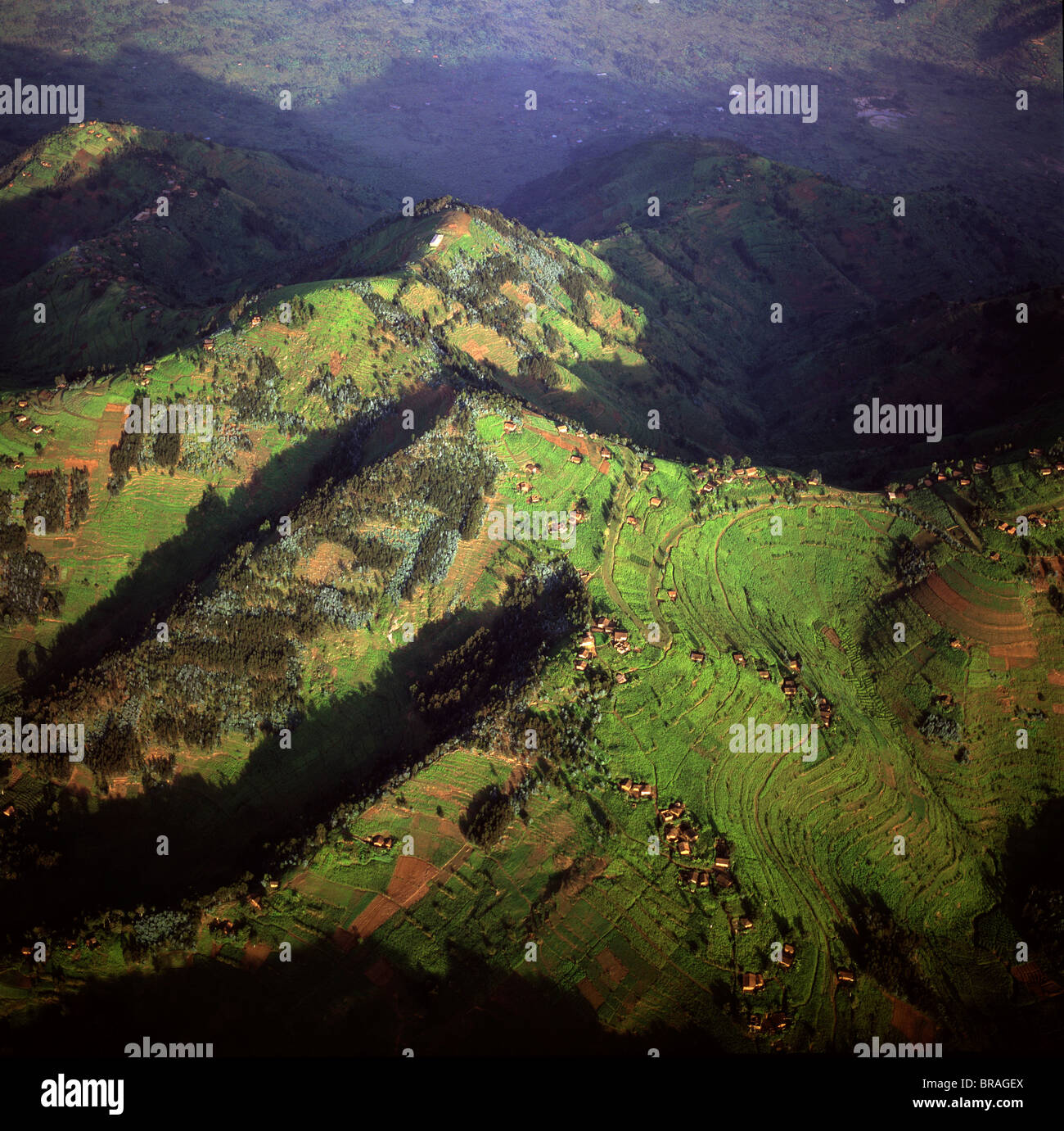 Aerial view of intensive agriculture in Rwanda, Africa Stock Photo
