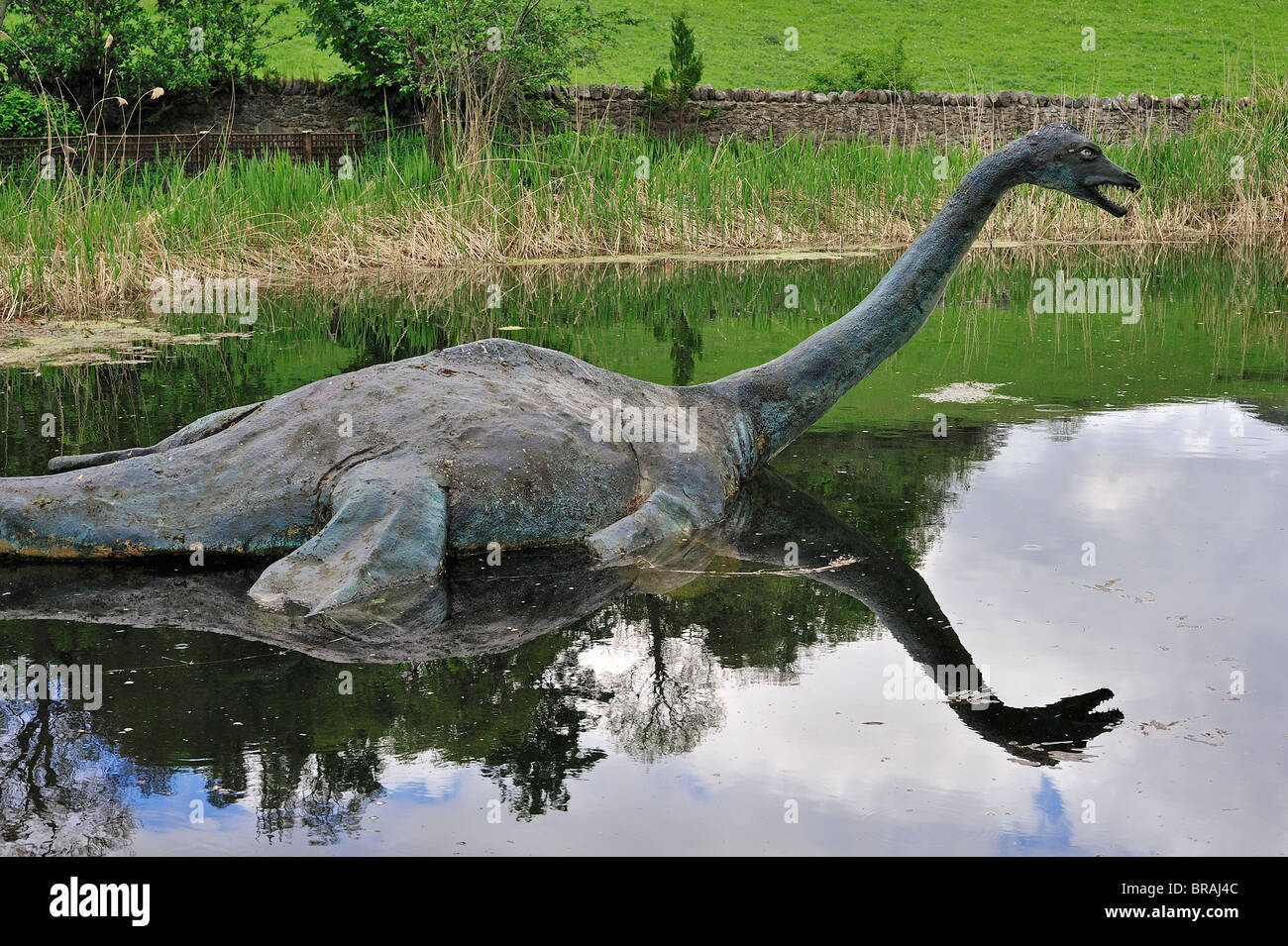 Where does a loch ness monster live