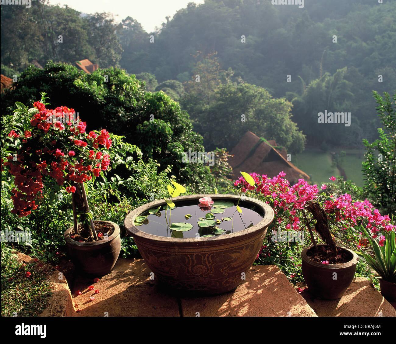 Recreational gardens in Mae Sa valley near Chiang Mai, Thailand, Southeast Asia, Asia - Stock Image