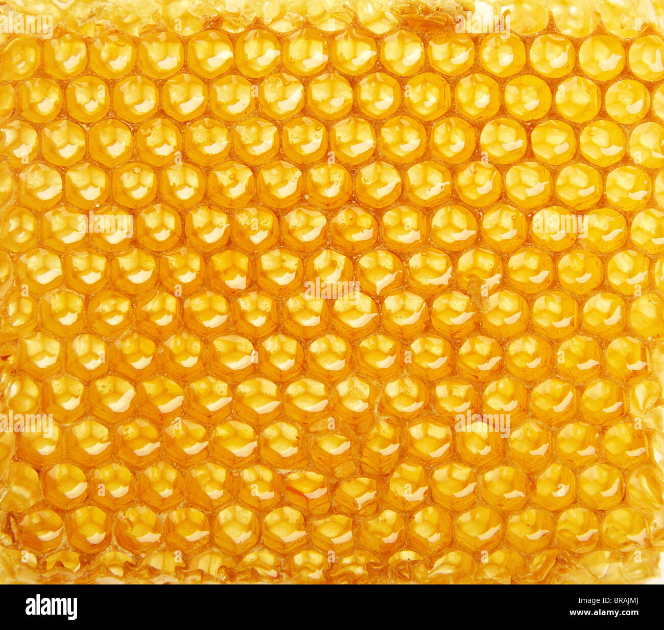 Yellow honeycomb wax cell detail texture background Stock Photo