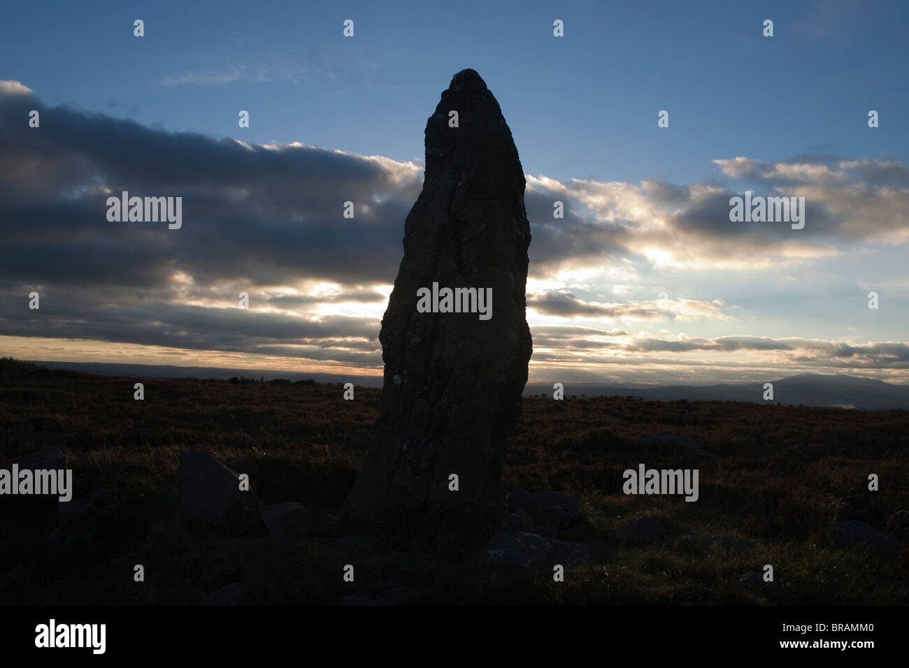 Standing Stone, Farbreaga, Co Waterford, Ireland - Stock Image