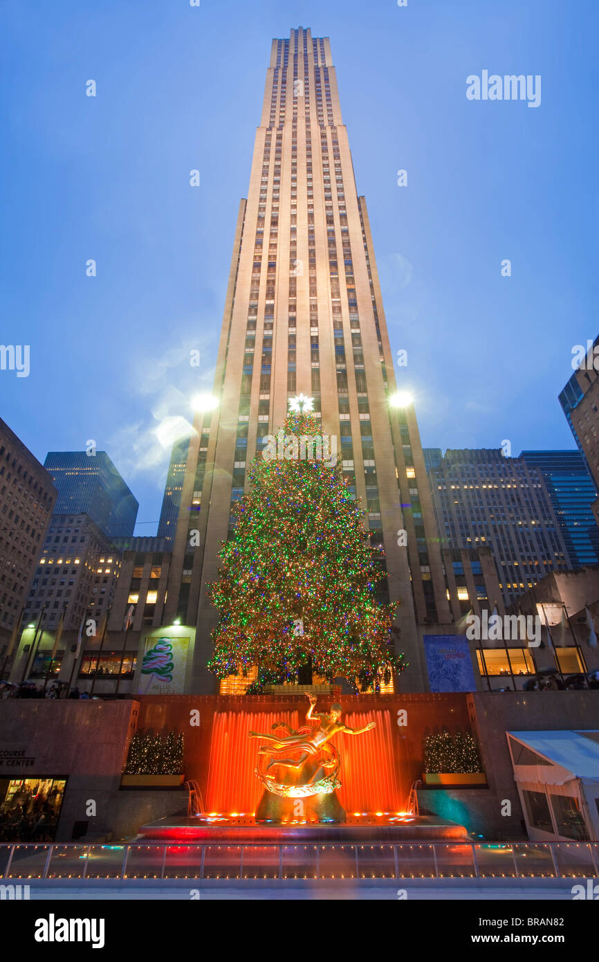 Christmas tree in front of the Rockefeller Centre building on Fifth Avenue, Manhattan, New York City, New York, - Stock Image