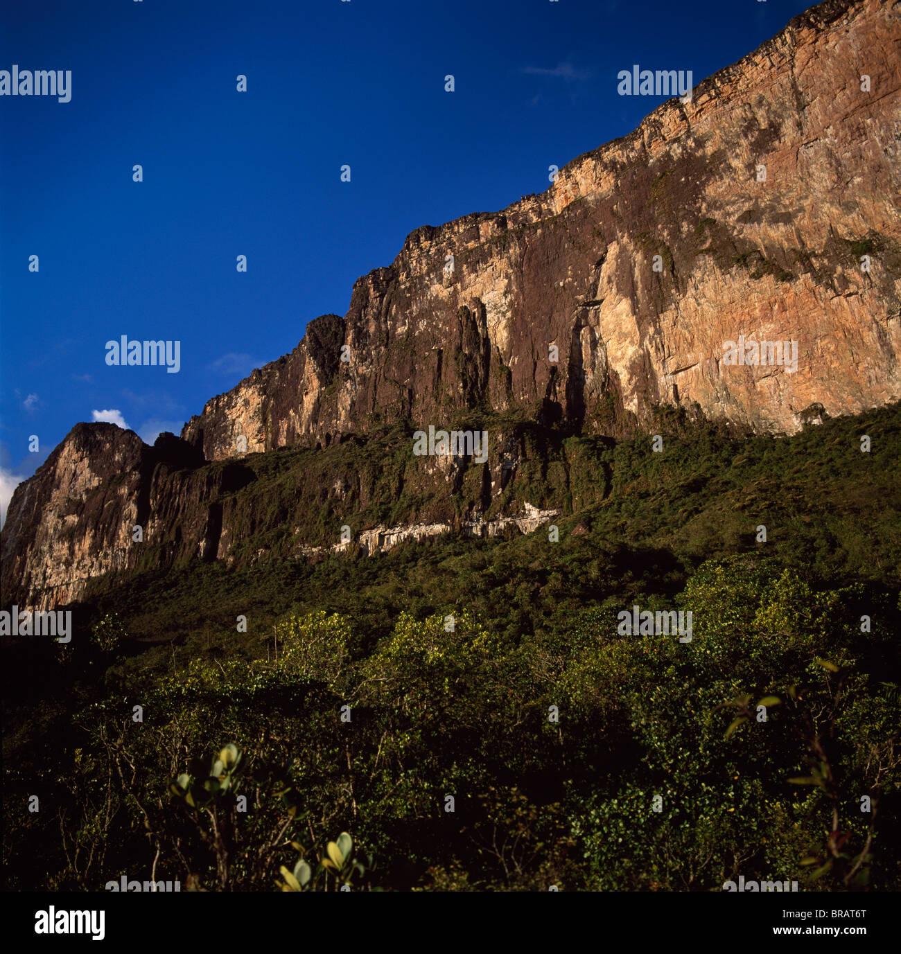 Ascent ledge on southwest cliff, Mount Roraima (Cerro Roraima), Tepuis, Estado Bolivar, Venezuela, South America - Stock Image