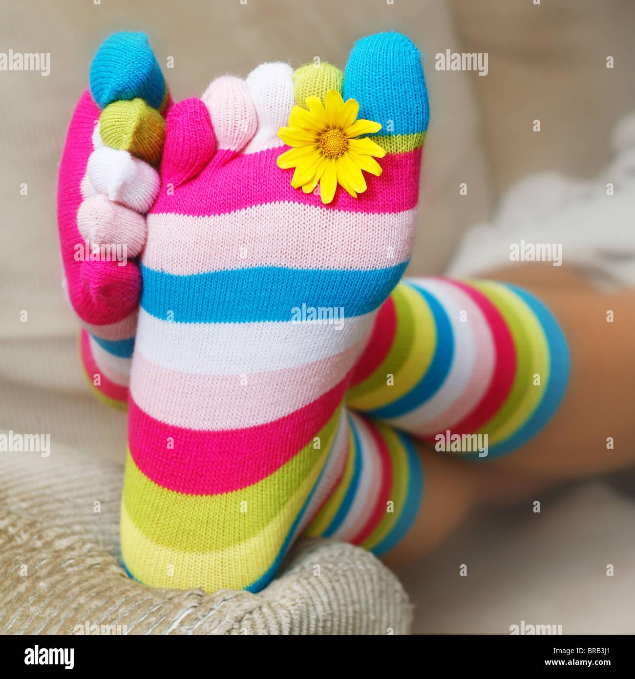Bright socks and a daisy on the sofa - Stock Image